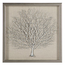 Sterling Sea Fan Shadowbox