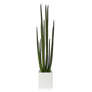 Faux Snake Plant With Pot by Z Gallerie