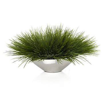 Grass In Silver Pot