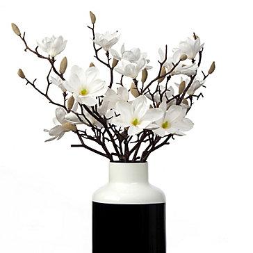 Sauser Magnolia - Set of 3