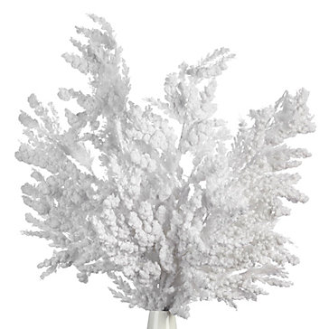 Snowy Spray - Set of 3