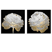 Gold And White Blossom On Black - Set of 2