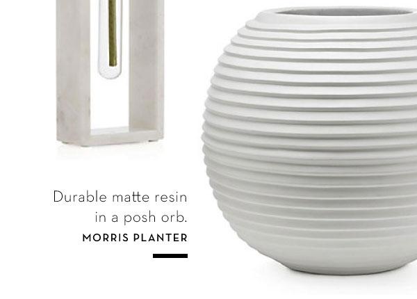 MOrris Planter