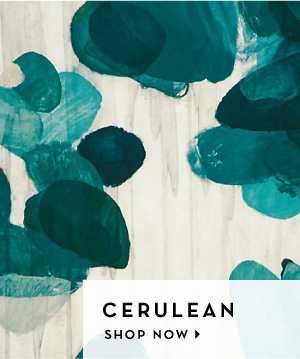 We love color - Cerulean - Shop Now