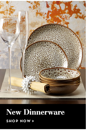 New Dinnerware - Shop Now